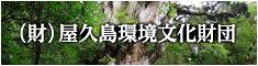 屋久島環境文化財団